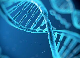 dna  Tech DNA 324x235